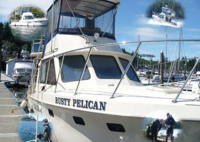 rusty-pelican1